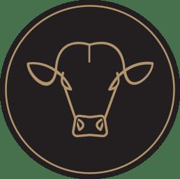 bullstar-povestea-noastra